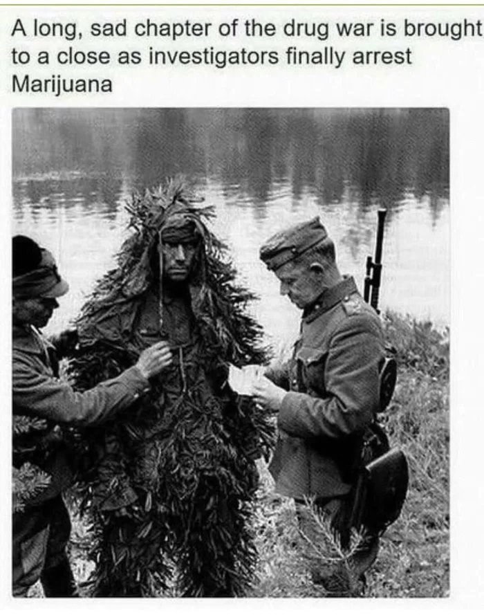 history meme - Human - A long, sad chapter of the drug war is brought to a close as investigators finally arrest Marijuana