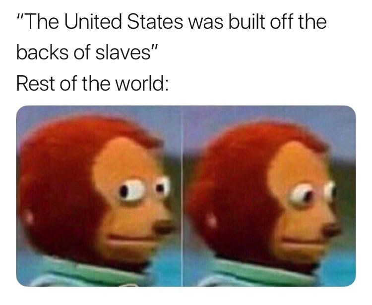 """history meme - Organism - """"The United States was built off the backs of slaves"""" Rest of the world:"""