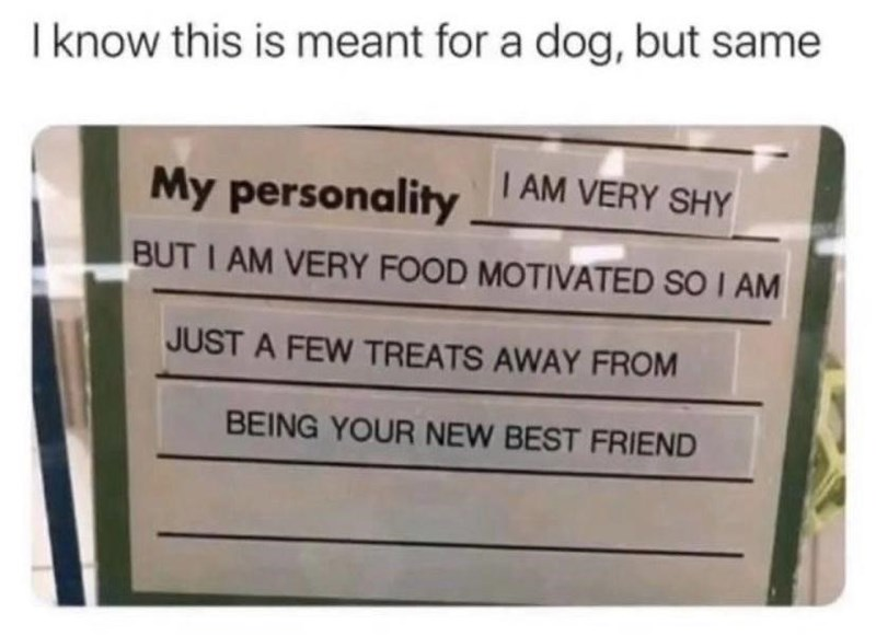 Text - I know this is meant for a dog, but same My personality I AM VERY SHY BUT I AM VERY FOOD MOTIVATED SO I AM JUST A FEW TREATS AWAY FROM BEING YOUR NEW BEST FRIEND