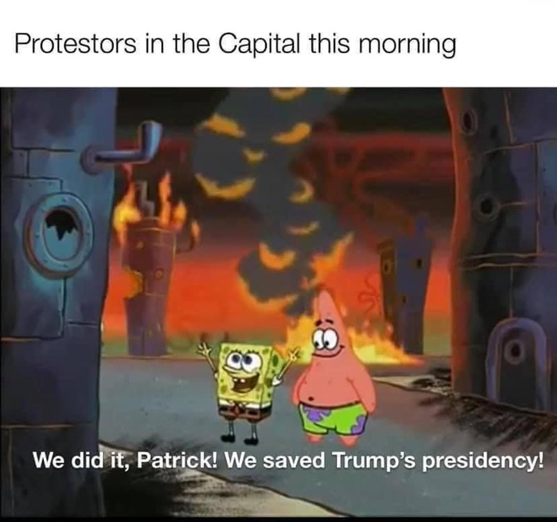 Animation - Protestors in the Capital this morning We did it, Patrick! We saved Trump's presidency!