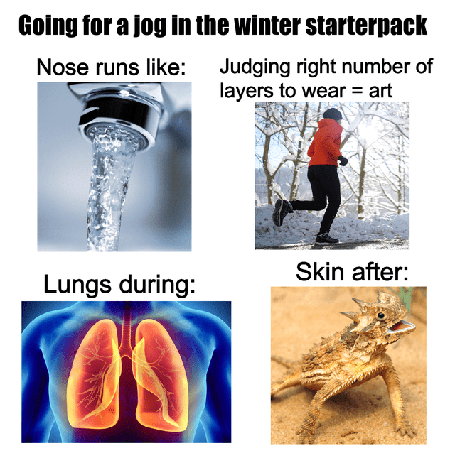 Organism - Going for a jog in the winter starterpack Nose runs like: Judging right number of layers to wear = art Skin after: Lungs during:
