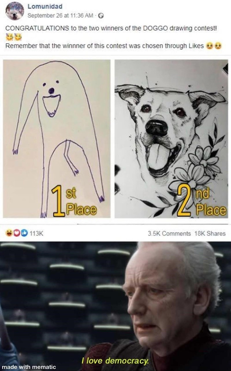 funny, memes, dog memes, dogs | Lomunidad CONGRATULATIONS to the two winners of the DOGGO drawing contest! Remember that the winnner of this contest was chosen through Likes I love democracy.
