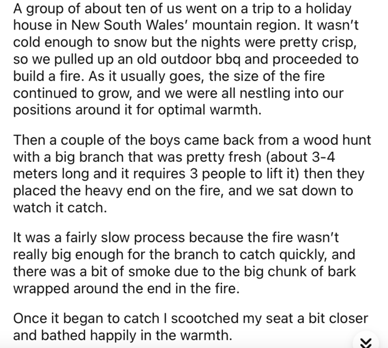 Text - A group of about ten of us went on a trip to a holiday house in New South Wales' mountain region. It wasn't cold enough to snow but the nights were pretty crisp, so we pulled up an old outdoor bbq and proceeded to build a fire. As it usually goes, the size of the fire continued to grow, and we were all nestling into our positions around it for optimal warmth. Then a couple of the boys came back from a wood hunt with a big branch that was pretty fresh (about 3-4 meters long and it requires
