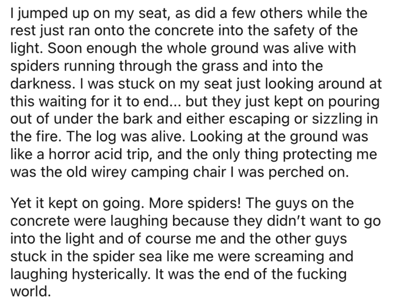 Text - I jumped up on my seat, as did a few others while the rest just ran onto the concrete into the safety of the light. Soon enough the whole ground was alive with spiders running through the grass and into the darkness. I was stuck on my seat just looking around at this waiting for it to end... but they just kept on pouring out of under the bark and either escaping or sizzling in the fire. The log was alive. Looking at the ground was like a horror acid trip, and the only thing protecting me