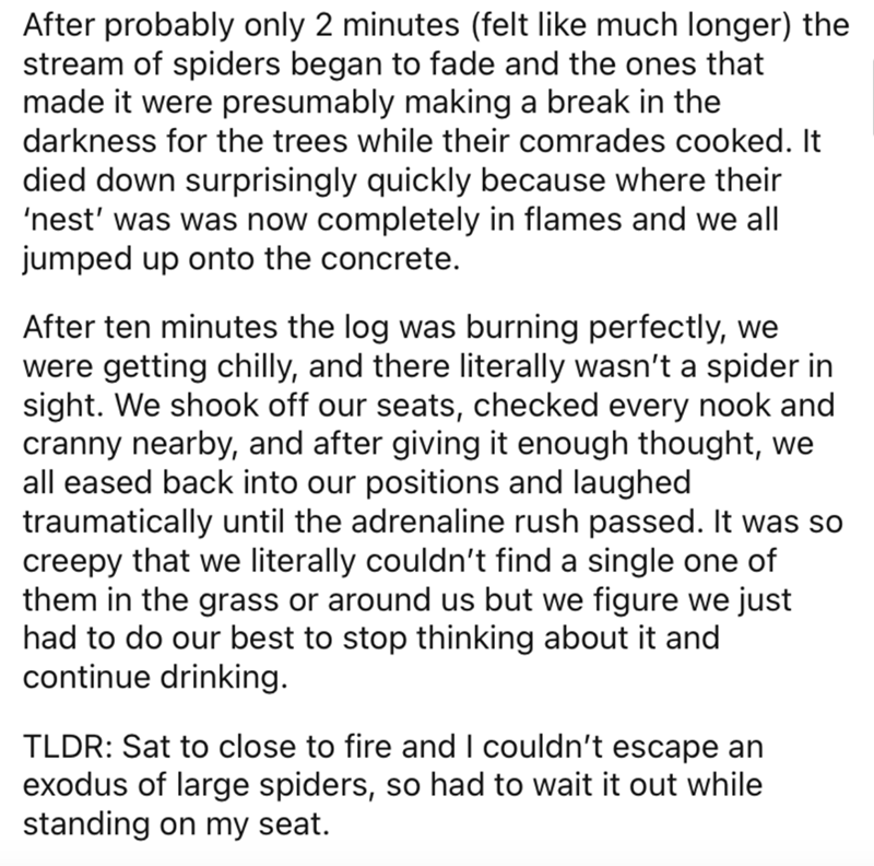 Text - After probably only 2 minutes (felt like much longer) the stream of spiders began to fade and the ones that made it were presumably making a break in the darkness for the trees while their comrades cooked. It died down surprisingly quickly because where their 'nest' was was now completely in flames and we all jumped up onto the concrete. After ten minutes the log was burning perfectly, we were getting chilly, and there literally wasn't a spider in sight. We shook off our seats, checked ev