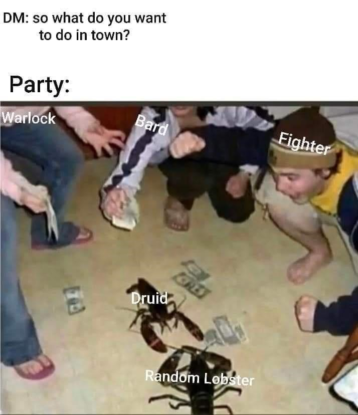 Finger - DM: so what do you want to do in town? Party: Bard Fighter Warlock ERES Druid Random Lobster