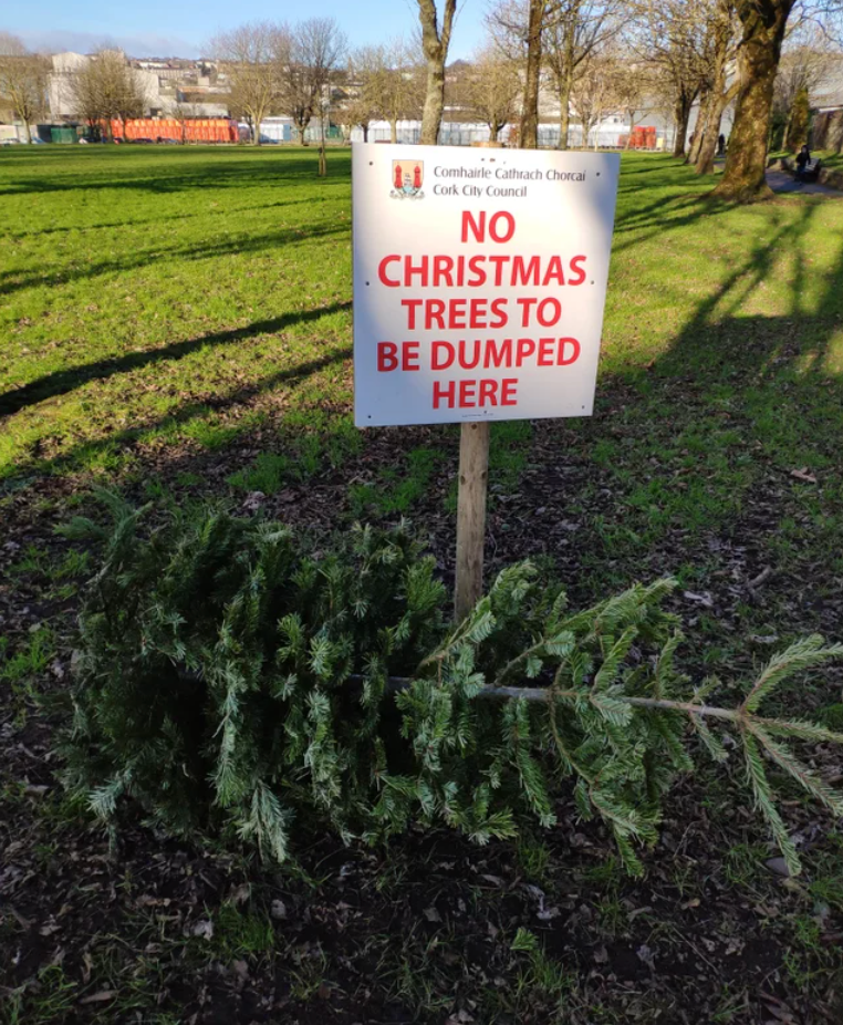 Land lot - Comhairle Cathrach Chorcai Cork City Council NO CHRISTMAS. TREES TO BE DUMPED HERE