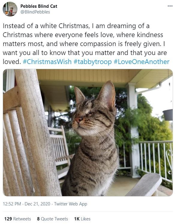 Organism - Pebbles Blind Cat 000 @BlindPebbles Instead of a white Christmas, I am dreaming of a Christmas where everyone feels love, where kindness matters most, and where compassion is freely given. I want you all to know that you matter and that you are loved. #ChristmasWish #tabbytroop #LoveOneAnother 12:52 PM · Dec 21, 2020 · Twitter Web App 129 Retweets 8 Quote Tweets 1K Likes
