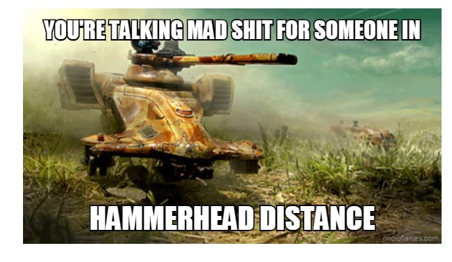 Motor vehicle - YOU'RE TALKING MAD SHIT FOR SOMEONE IN HAMMERHEAD DISTANCE (RICrofames.com