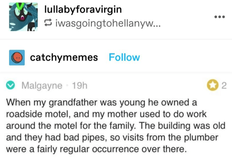 Green - lullabyforavirgin S iwasgoingtohellanyw... •.. catchymemes Follow Malgayne 19h 2 When my grandfather was young he owned a roadside motel, and my mother used to do work around the motel for the family. The building was old and they had bad pipes, so visits from the plumber were a fairly regular occurrence over there.
