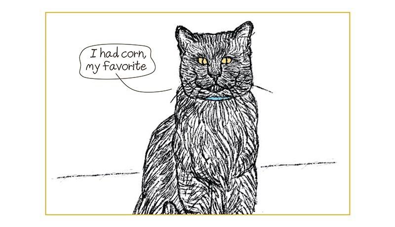 Organism - I had corn, my favorite