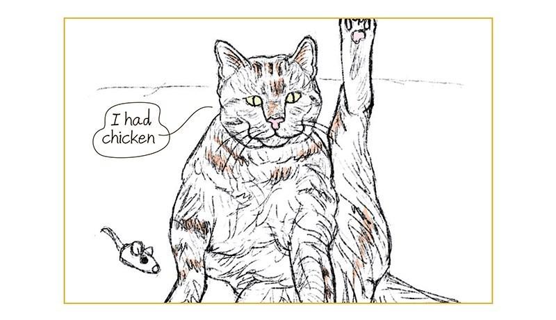 Organism - I had chicken