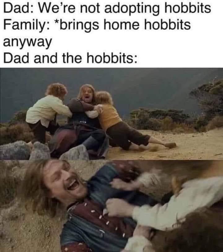 Human - Dad: We're not adopting hobbits Family: *brings home hobbits anyway Dad and the hobbits: