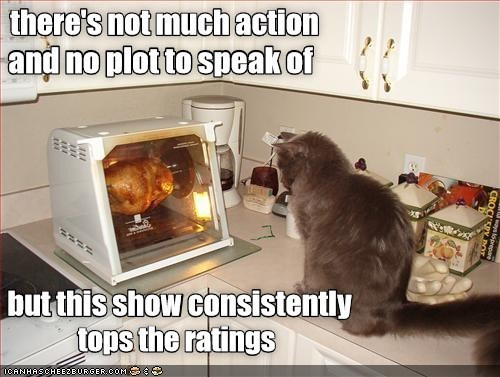 there's not much action and no plot to speak of but this show consistently tops the ratings | cat watching an entire chicken grilled in the oven