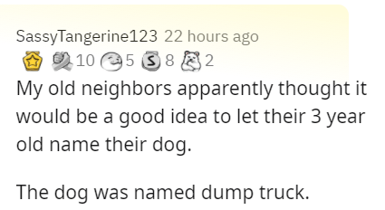 Text - SassyTangerine123 22 hours ago O 2 10 e5 S 8 2 My old neighbors apparently thought it would be a good idea to let their 3 year old name their dog. The dog was named dump truck.