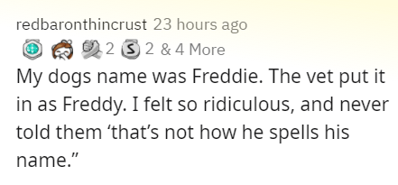 """Text - Text - redbaronthincrust 23 hours ago 22 3 2 & 4 More My dogs name was Freddie. The vet put it in as Freddy. I felt so ridiculous, and never told them 'thať's not how he spells his name."""""""