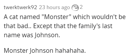 """Text - Text - twerktwerk92 23 hours ago (@ 2 A cat named """"Monster"""" which wouldn't be that bad.. Except that the family's last name was Johnson. Monster Johnson hahahaha."""
