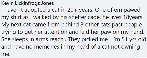 Text - Kevin Lickinfrogz Jones I haven't adopted a cat in 20+ years. One of em pawed my shirt as I walked by his shelter cage, he lives 18years. My next cat came from behind 3 other cats past people trying to get her attention and laid her paw on my hand. She sleeps in arms reach. They picked me. I'm 51 yrs old and have no memories in my head of a cat not owning me.