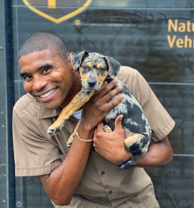 Dog breed - Nate Vehi