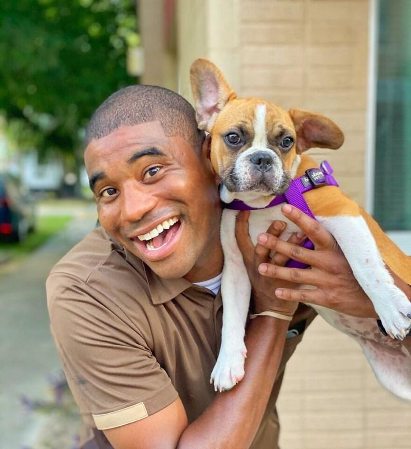 Dog breed - bon