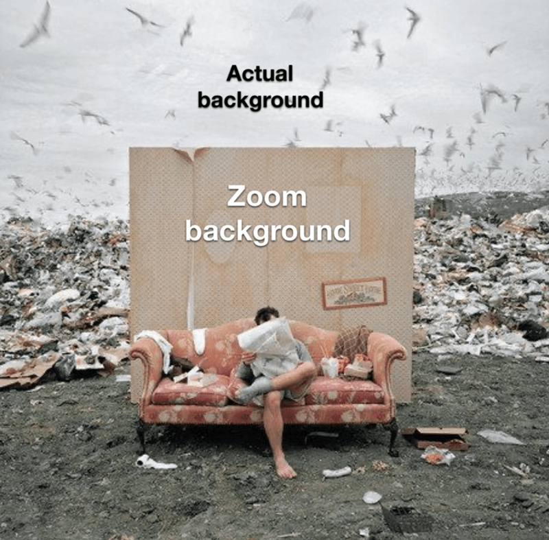 zoom, relatable memes, funny memes, memes | Actual background Zoom background person sitting on a couch in the middle of a landfill