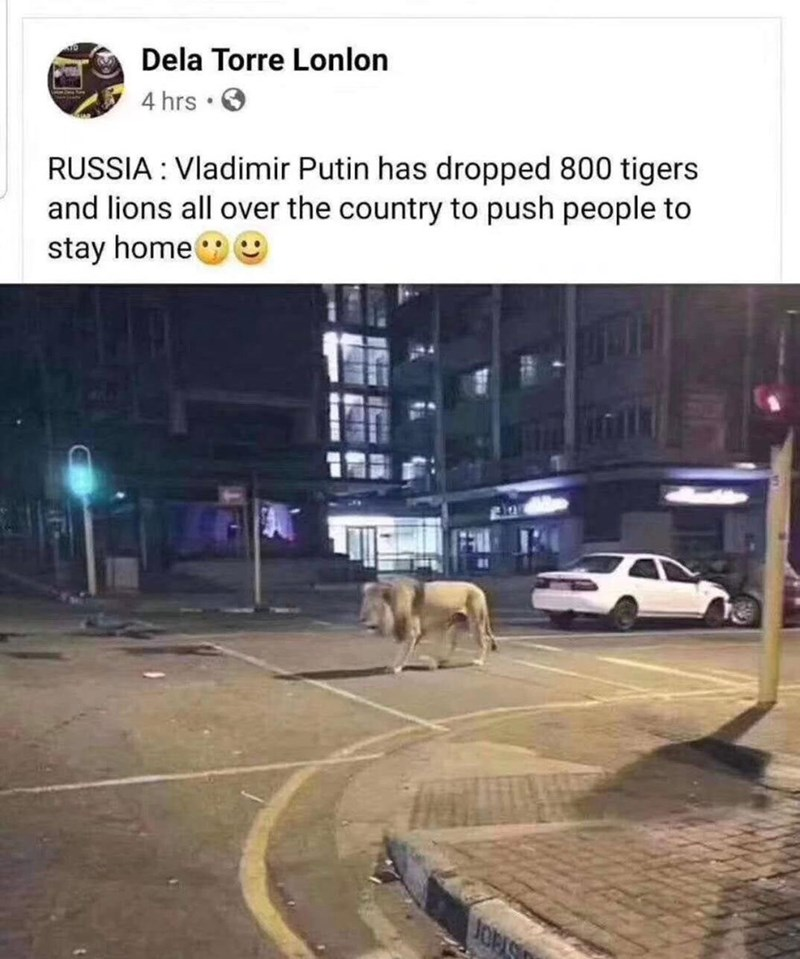 Building - Dela Torre Lonlon 4 hrs • O RUSSIA : Vladimir Putin has dropped 800 tigers and lions all over the country to push people to stay home O JOPIS