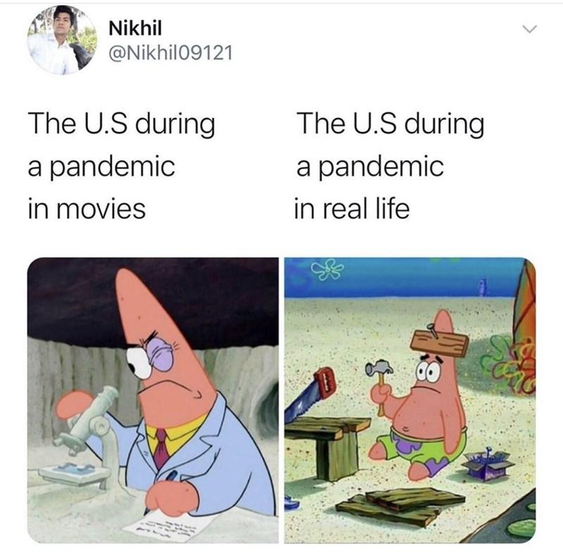 Vertebrate - Nikhil @Nikhil09121 The U.S during The U.S during a pandemic a pandemic in movies in real life