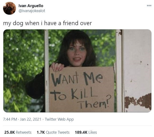 Hair - Ivan Arguello @ivanajokealot 000 my dog when i have a friend over WANT Me to KILL Them! 7:44 PM Jan 22, 2021 · Twitter Web App 25.8K Retweets 1.7K Quote Tweets 189.4K Likes