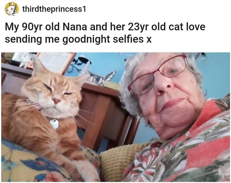 Glasses - thirdtheprincess1 My 90yr old Nana and her 23yr old cat love sending me goodnight selfies x