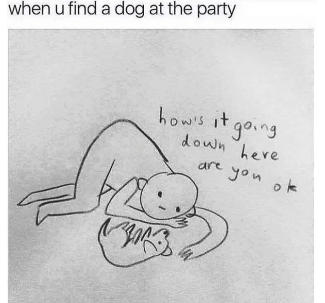 Handwriting - when u find a dog at the party how's it going down here are you ok