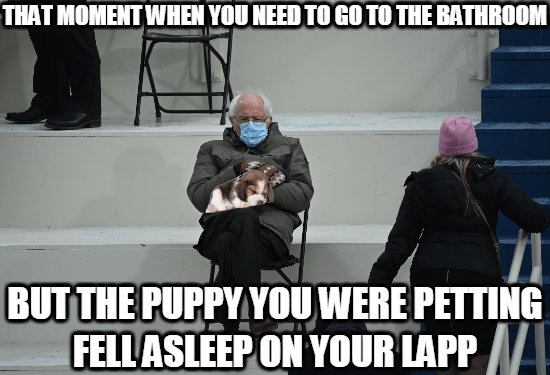 Human - THAT MOMENT WHEN YOU NEED TO GO TO THE BATHROOM BUT THE PUPPY YOU WERE PETTING FELL ASLEEP ON YOUR LAPP