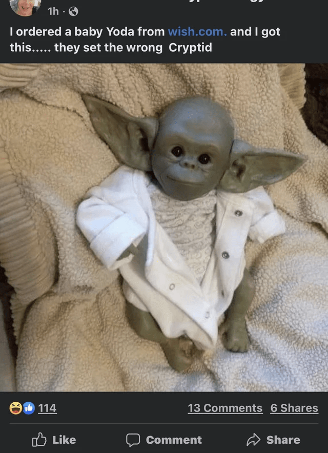 Sleeve - 1h · O I ordered a baby Yoda from wish.com. and I got this..... they set the wrong Cryptid 114 13 Comments 6 Shares O Like Comment Share