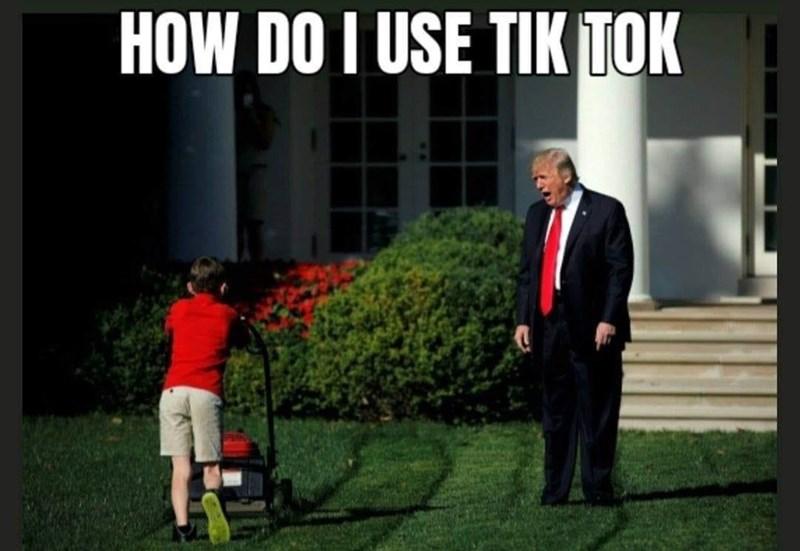 Plant - HOW DO I USE TIK TOK