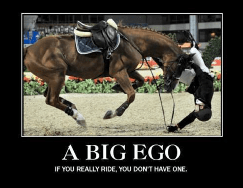 Horse - A BIG EGO IF YOU REALLY RIDE, YOU DON'T HAVE ONE.
