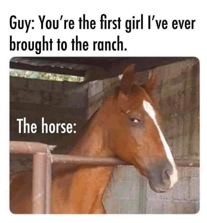 Horse - Guy: You're the first girl I've ever brought to the ranch. The horse: