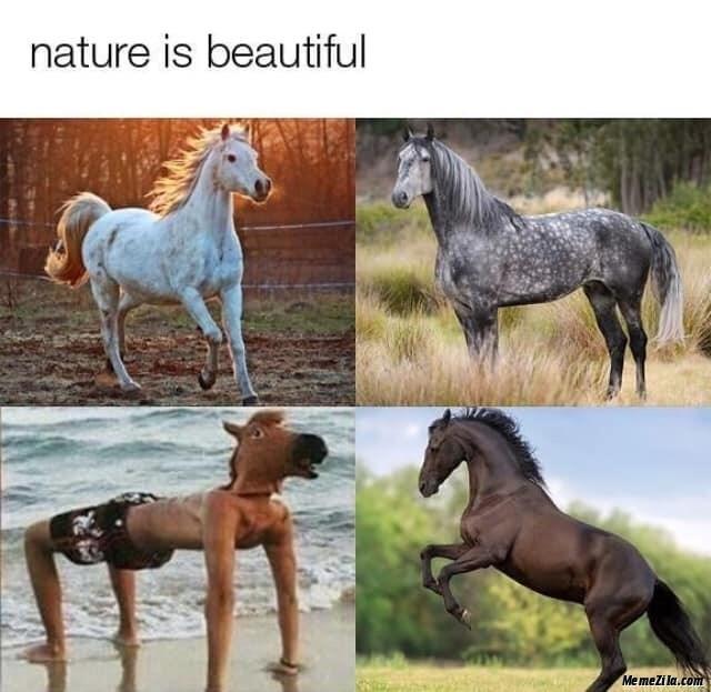 Horse - nature is beautiful Me mezi la.com