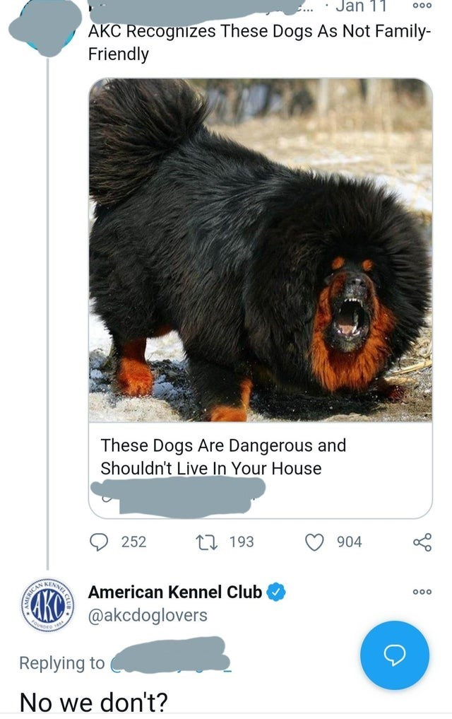 Primate - Jan 11 AKC Recognizes These Dogs As Not Family- Friendly These Dogs Are Dangerous and Shouldn't Live In Your House 252 27 193 904 American Kennel Club 00 KO @akcdoglovers Replying to No we don't?