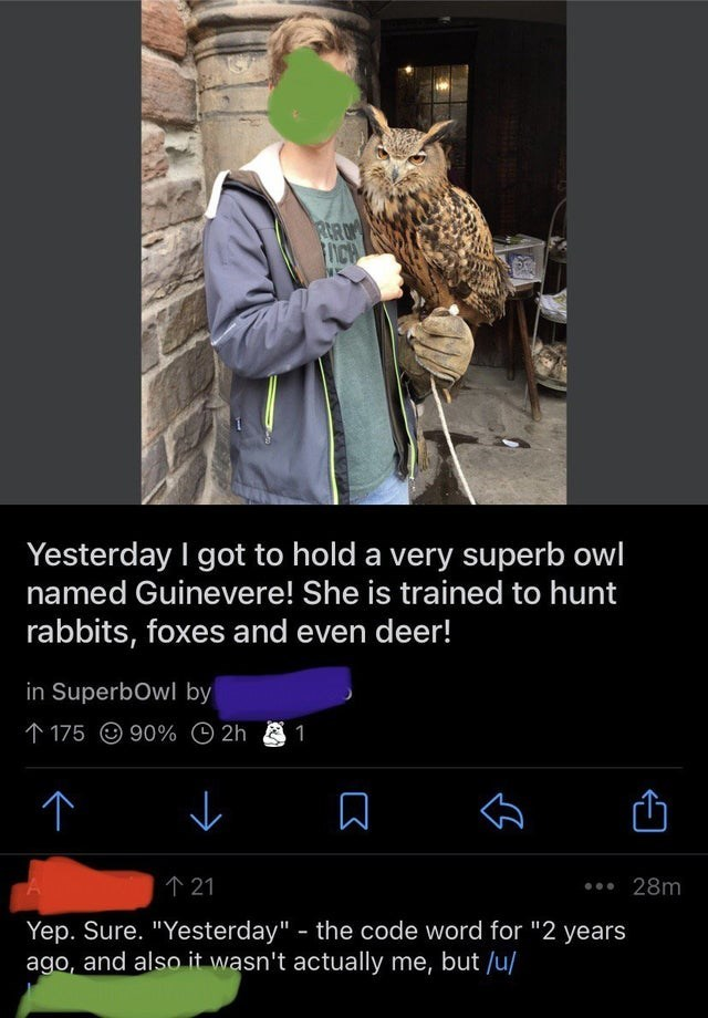 """Coat - ICH Yesterday I got to hold a very superb owl named Guinevere! She is trained to hunt rabbits, foxes and even deer! in SuperbOwl by 个175 @90% O 2h 1 个21 •.. 28m Yep. Sure. """"Yesterday"""" - the code word for """"2 years ago, and also it wasn't actually me, but /u/"""