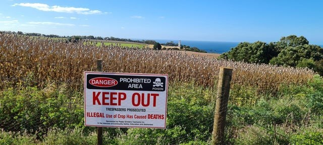 Sky - DANGER PROHIBITED AREA POISON КEЕР OUT TRESPASSERS PROSECUTED ILLEGAL Use of Crop Has Caused DEATHS