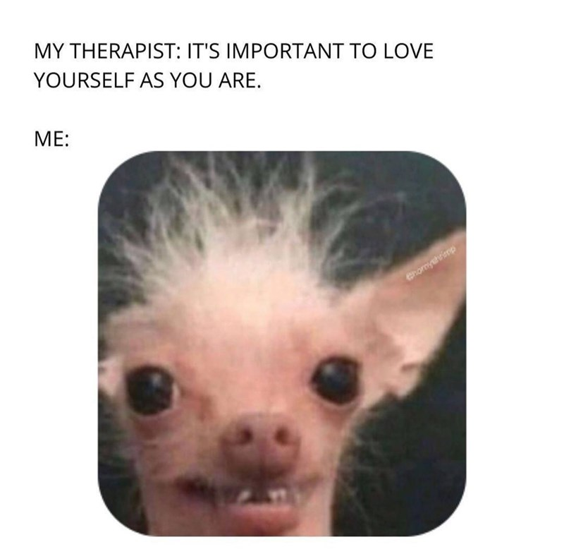 Carnivore - MY THERAPIST: IT'S IMPORTANT TO LOVE YOURSELF AS YOU ARE. МE: Chomyshrimp