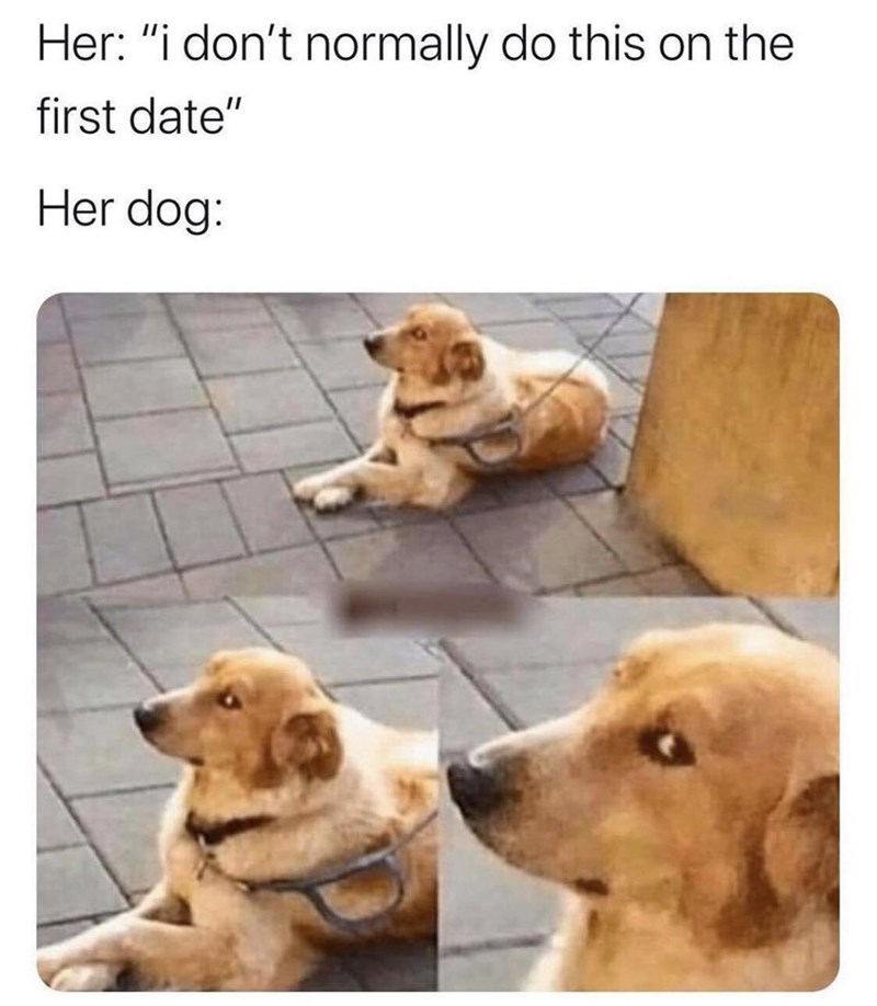 """Dog - Her: """"i don't normally do this on the first date"""" Her dog:"""
