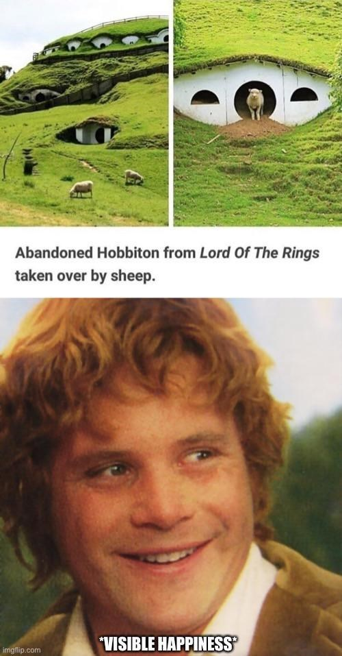 Smile - Abandoned Hobbiton from Lord Of The Rings taken over by sheep. VISIBLE HAPPINESS imgflip.com