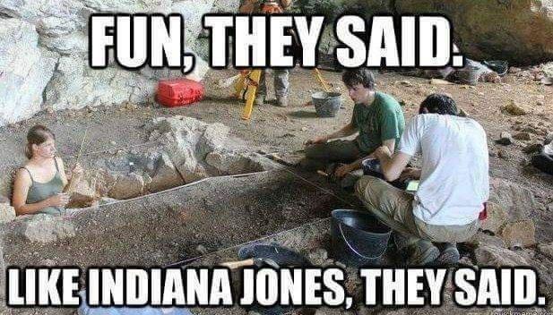 Automotive tire - FUN, THEY SAID. LIKE INDIANA JONES, THEY SAID.