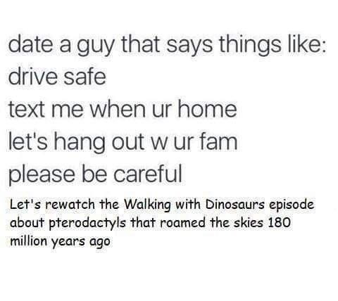 Font - date a guy that says things like: drive safe text me when ur home let's hang out w ur fam please be careful Let's rewatch the Walking with Dinosaurs episode about pterodactyls that roamed the skies 180 million years ago