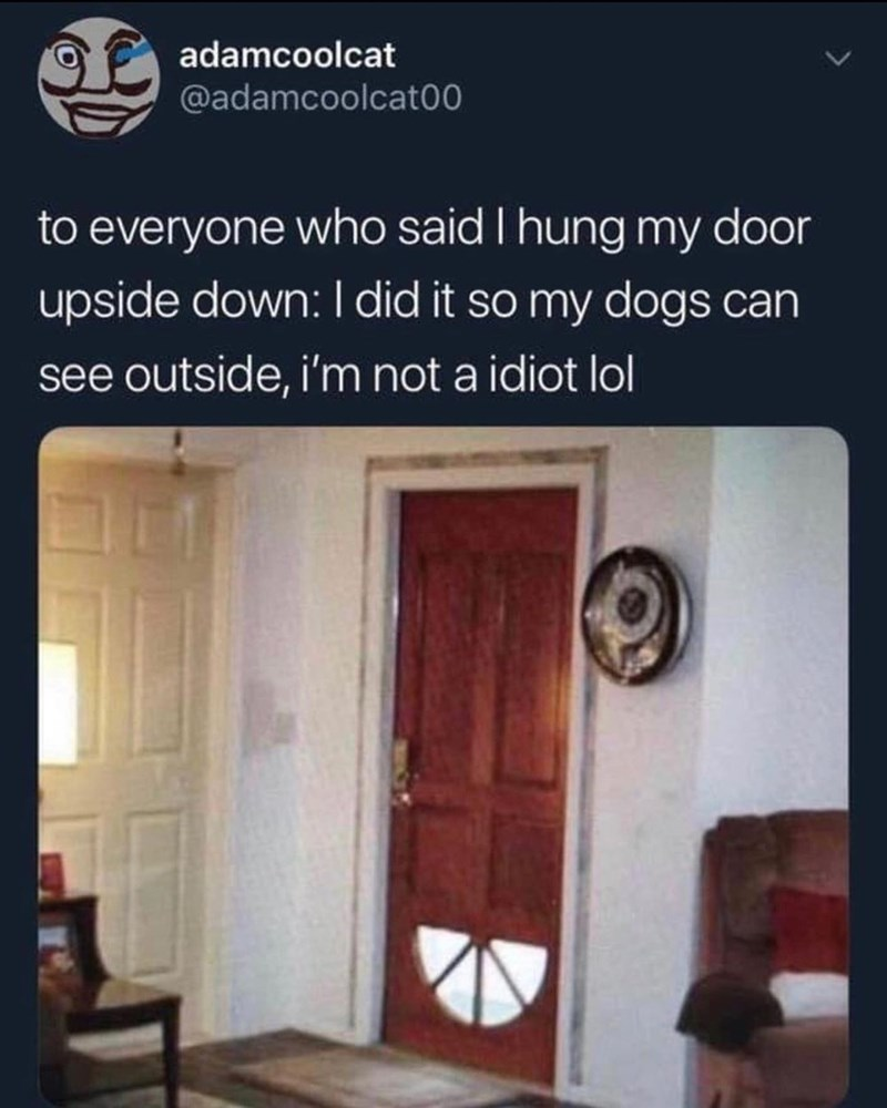 Property - adamcoolcat @adamcoolcat00 to everyone who said I hung my door upside down: I did it so my dogs can see outside, i'm not a idiot lol