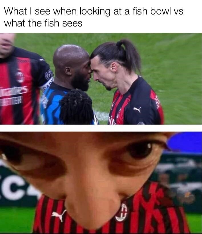 Clothing - What I see when looking at a fish bowl vs what the fish sees fe CART