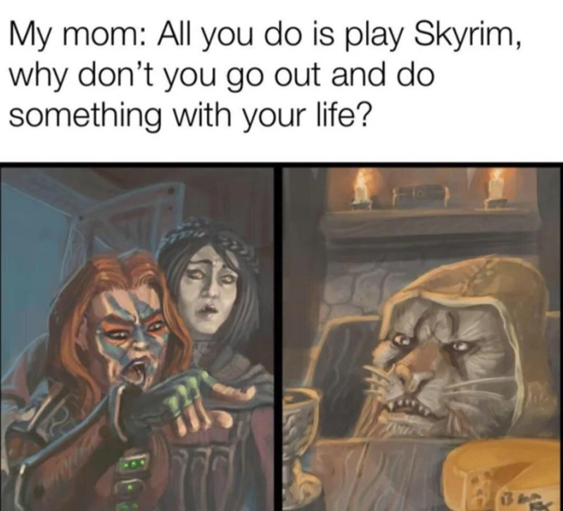 Organism - My mom: All you do is play Skyrim, why don't you go out and do something with your life?