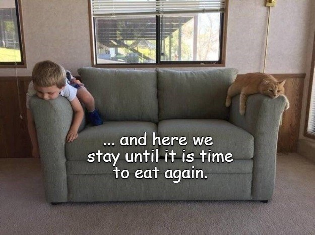 and here we stay until it is time to eat again.   funny pic of a cat and a baby each on a different end of a couch looking bored