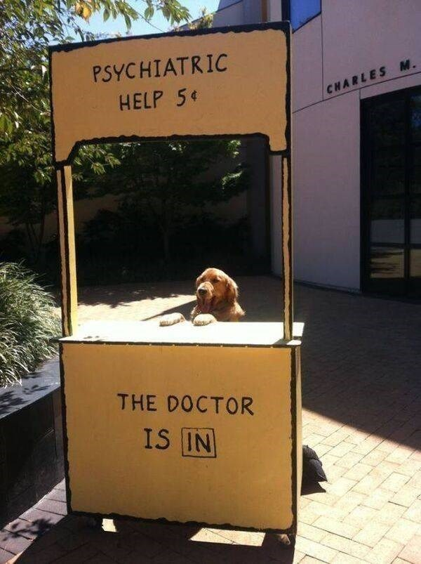 PSYCHIATRIC HELP THE DOCTOR IS IN | funny pic of a dog behind Lucy's psychiatry booth from Peanuts