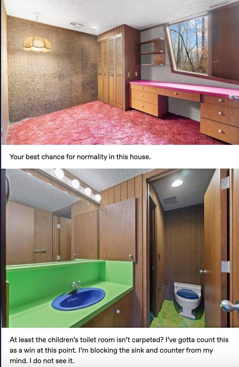 Property - Your best chance for normality in this house. At least the children's toilet room isn't carpeted? I've gotta count this as a win at this point. I'm blocking the sink and counter from my mind. I do not see it.